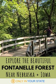 Meet Nearly 400 Different Animal Species At Fontenelle Forest Nature Center In Nebraska Forest And Wildlife, Wildlife Safari, Bellevue Nebraska, Forest Trail, Us Road Trip, Hidden Beach, Beautiful Forest, Nature Center, Weekend Getaways