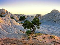 Ireal de frumoasa, natura - Cecil Whitt | 13 din 16