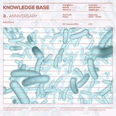 Knowledge Base w/ margita a besna | 25.1.2013 | WAVE
