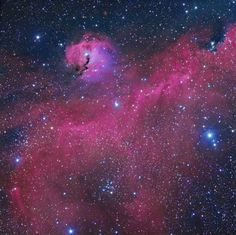 The Seagull Nebula Image Credit & Copyright: Michael Sidonio    Explanation: This broad expanse of glowing gas and dust presents a bird-like visage to astronomers from planet Earth, suggesting its popular moniker - The Seagull Nebula. This portrait of the cosmic bird covers a 1.6 degree wide swath across the plane of the Milky Way, near the direction of Sirius, alpha star of the constellation Canis Major...