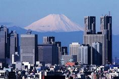 In this high-rise, how many people go see the distant Mount Fuji