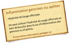 hydrolat sauge officinale aphte