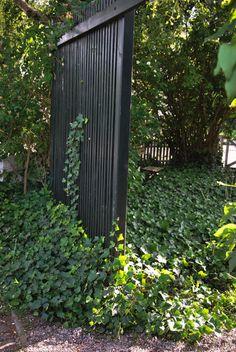 Katarinas trädgård: En hemlig trädgård Woodland, Plank, Pergola, Outdoor Structures, Outdoor Gardens, Fences, Outdoor Living, Patios, Entrance