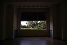 """Treeptyque"" by Pierre-Paul De Beir #art #artphotography #photography #tictacartcollection #treeptyque #pierrepauldebeir"