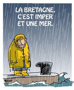 image de pluie et de cirés. ça m'inspire !