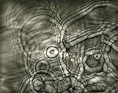 water photogram by shokoofeh-dezfuli