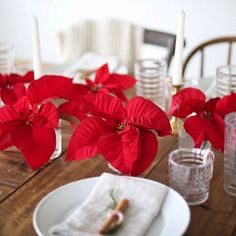 Easy DIY: Deconstruct a poinsettia for a 5 minute centerpiece