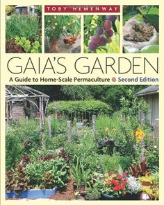 I love this book, its beautiful. Gaia's Garden - a Guide to Home-Scale Permaculture by Toby Hemenway