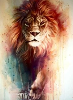 Lion tatto