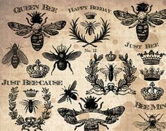 Queen Bees Vintage Hoja Collage , Arte Digital, Abeja Clipart, Queen Bee Clipart , Vintage French Wreath Clipart,  SVG , AI y archivos EPS