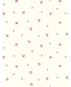 Image result for rose bud wallpaper