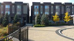 Senele Toronto Condo, Condos, Sidewalk, Explore, Walkway, Walkways, Exploring