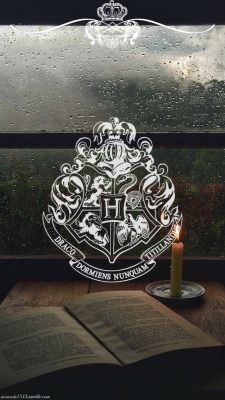 Harry Potter Archives - Our World is Amazing Arte Do Harry Potter, Theme Harry Potter, Harry Potter Tumblr, Harry Potter Pictures, Harry Potter Quotes, Harry Potter Love, Harry Potter Universal, Harry Potter Fandom, Harry Potter World