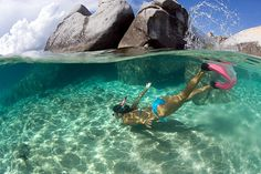 snorkeling on exotic tropical vacation in clear turquoise waters under over split view     Awesome vacations