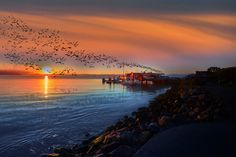 10 Sunrise at Sausalito by Like He