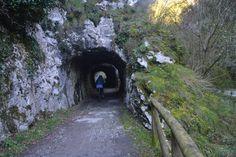 Realizamos en bicicleta el tramo de la Senda del Oso de Tuñon a Teverga, disfrutando del paisaje entre ríos, osos, túneles, montañas y desfiladeros, parando a repostar en el Restaurante Peña Sobia …