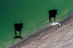 """12 Of The Most Fly Photos Taken By Drones In 2017 