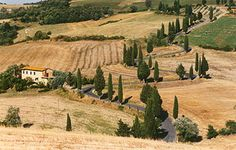 Slow Travel Italy - Cypress Lined Roads in southern Tuscany