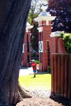 Queenspark we love you! New Zealand, Scenery, Sidewalk, Park, History, Places, Beautiful, Historia, Landscape
