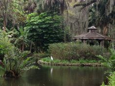 The 12 Best Places In Florida To Go On An Unforgettable Picnic Best Places In Florida, Prom Photography, Florida Gardening, Picnic Spot, Palm Coast, Photography Challenge, Organic Gardening Tips, Park Homes, Florida Travel