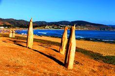 Playa Cachagua by gabi.goni