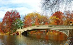 Manhattan Central Park Autumn Lake Bridge Water Trees New York City Fall Bow Rocks Bridges Wide Resolution
