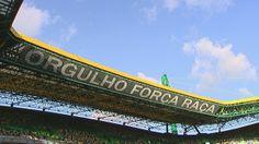 Sporting Clube de Portugal - Amor Eterno