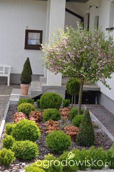 Front Garden Landscape, Landscape Design, Garden Design, Garden Mum, Herb Garden, European Garden, Flower Beds, Backyard Landscaping, Curb Appeal