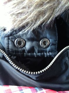 PAREIDOLIA ,FACES IN UNUSUAL PLACES...Are we going out? I love when we go out!  TOPIC PASSED ALONG TO WISHFUL FROM ERIN 3/16/16