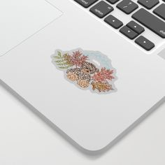 Autumn Bear Sticker by boissindesign Bear, Autumn, Stickers, Stuff To Buy, Fall Season, Bears, Fall, Decals