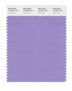 Pantone violet tulip, which goes so well with sea fog.
