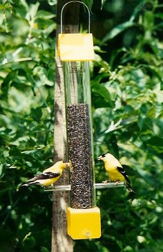 25$. Peter's Feeders T-01 Finch Feeder: The economical by PetersFeeders