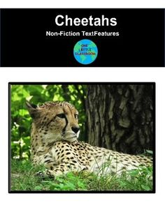 Nonfiction Text Features: Cheetahs by One Little Classroom | TpT 2nd Grade Reading Worksheets, Short Passage, Nonfiction Text Features, Middle School English, Readers Workshop, English Language Arts, Figurative Language, Cheetahs, Word Families