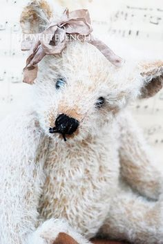 Mohair teddy bear.
