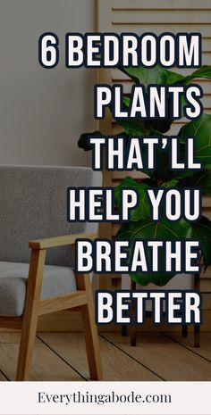 6 Bedroom Plants That'll Help You Breathe Better At Night. These bedroom plants will help purify the air in your bedroom #bedroomplants Health Tips, Health And Wellness, Bedroom Plants, Weight Loss Tips, Beauty Hacks, Breathe, Amazing, Replant, Indoor Gardening