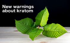FDA Flexes Muscles, Mandates Recall of Kratom for Salmonella (US/Nationwide)   Stop Foodborne Illness -