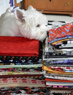 "Westie Julep: Meet The New Additions To My Fabric ""STASH"""