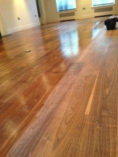 Walnut finish is rich without being dark or oppressive. Floor Stain, Hardwood Floors, Flooring, Walnut Finish, Basement Remodeling, Restoration, Dark, Wood Floor Tiles, Wood Flooring