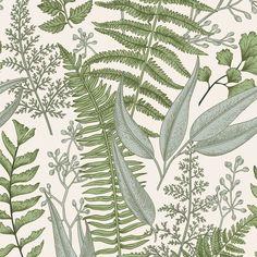 Ferns Botanical Light Wallpaper - 25W x 225H