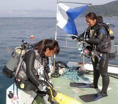 Scuba Girl, Womens Wetsuit, Scuba Diving, Woman, Girls, Diving, Toddler Girls, Daughters, Maids