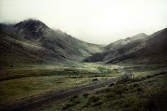 Mongolie by Vivement l'hiver, via Behance