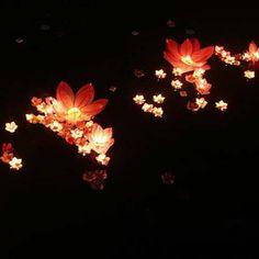 10×FLOWER Lotus Chinese Lanterns Wishing Floating Water Light ...