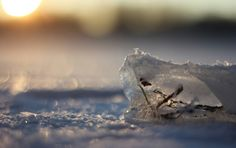 Light on the ice