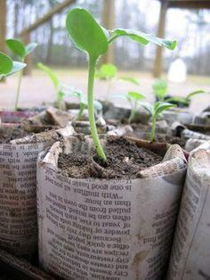 Idee du jour pour fabriquer des pots en journal pour la germination #jardinage #cheap