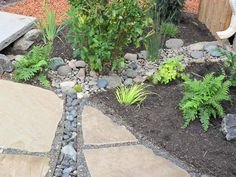 A dry stream with impervious pond liner conveys storm water from the downspout into the Rain Garden. Rain Garden by Apogee Landscapes.