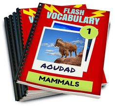Flash Vocabulary PRO Pre-Launch Giveaway!