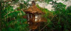 Treehouse Lodge. Iquitos, Peru.