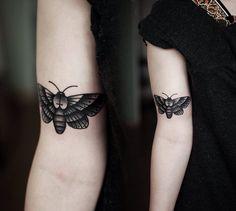 Moth by Kamil Czapiga
