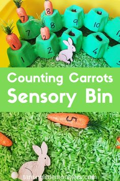 Count and match the numbered carrots hiding in this fun Easter Sensory bin for kids. This is a fantastic fine motor activity for toddlers or an easy introduction to math for preschoolers. Math Activities For Kids, Easter Activities, Motor Activities, Sensory Activities, Preschool Math, Holiday Activities, Easy Toddler Crafts, Sensory Bins, Sensory Play