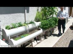 Can you build one of these?  Even if it isn't connected to the internet and 100% automatic.  I like the idea.  Internet of Farming: Arduino-based, backyard aquaponics